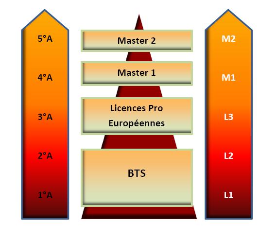 traitement automatique des langues pdf