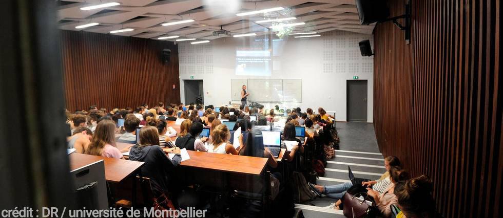 Fac de Montpellier crédit Le Nouveau Montpellier DR