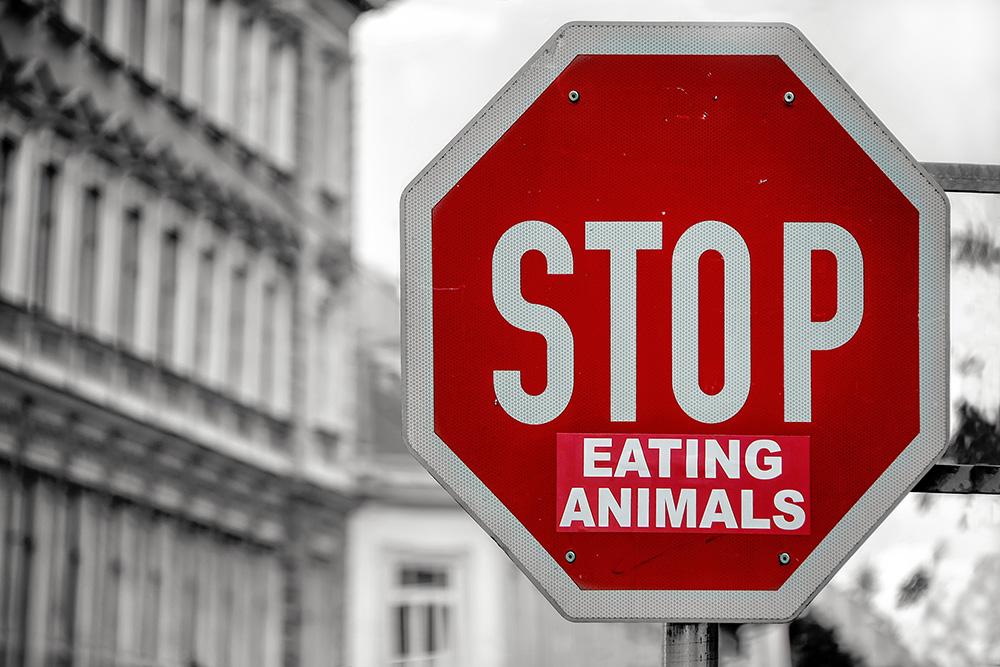 différence entre végétarien et végétalien
